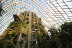 Nube Forest Singapore imagen de archivo libre de regalías
