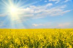 Nube grande en el cielo azul sobre el campo amarillo de la violación (fondos blur Fotografía de archivo libre de regalías