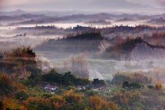 Nube hermosa, niebla con el bambú amarillo y colina Imagen de archivo