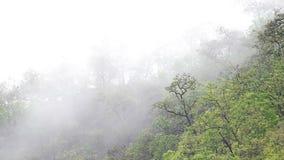 Nube lluviosa y la colina almacen de video