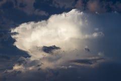Nube mullida en el cielo azul marino de la tarde del verano Imagen de archivo libre de regalías
