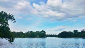 Nube nel cielo blu Immagine Stock