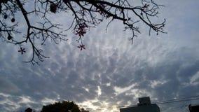 Nube Nube Sol Sun del cielo de Cielo fotos de archivo