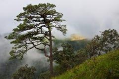 Nube sulla montagna Fotografia Stock