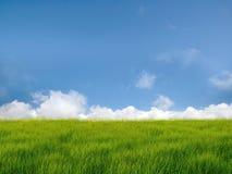 Nube y campo Imagenes de archivo