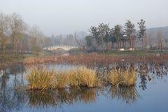 Nube y cielo que reflejan en el lago pacífico por una tarde común Imagen de archivo