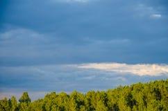 nubes azules en un claro verde Fotografía de archivo libre de regalías