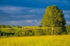 nubes azules en un claro verde Fotografía de archivo