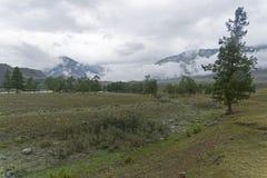 Nubes bajas en el valle del río de Chuya Altai, Rusia Imagen de archivo