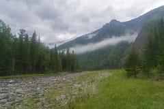 Nubes bajas en una cuesta de montaña Imagen de archivo libre de regalías