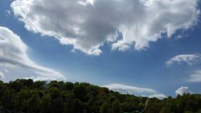 Nubes blancas en cielo azul sobre los árboles en Lituania Imágenes de archivo libres de regalías