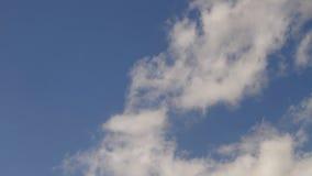 nubes blancas en el cielo azul almacen de video