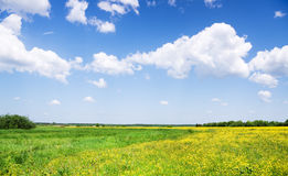 Nubes blancas sobre prado verde. Imagen de archivo