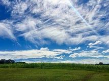 Nubes, cielo azul y tierra de pasto verde fotos de archivo