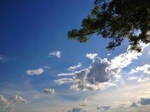 Nubes, cielo y árbol blancos Imágenes de archivo libres de regalías