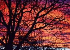 Nubes coloreadas Foto de archivo