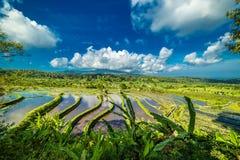 Nubes corrientes sobre terrazas del arroz Foto de archivo libre de regalías