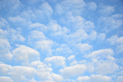 Nubes de Altocumulus en cielo azul Imagen de archivo
