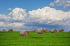 Nubes de cúmulo sobre Hay Field Fotografía de archivo