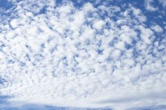 Nubes de cirro con el fondo del cielo azul fotografía de archivo libre de regalías
