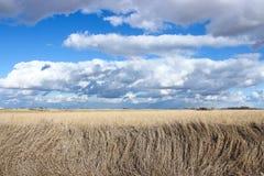 Nubes de Iowa imagen de archivo libre de regalías