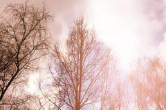 Nubes de la puesta del sol del cúmulo con el establecimiento del sol imagen de archivo libre de regalías