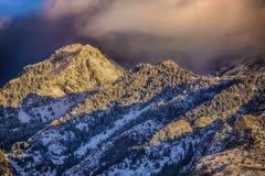 Nubes de la puesta del sol sobre los pinos HDR Nevado Foto de archivo libre de regalías