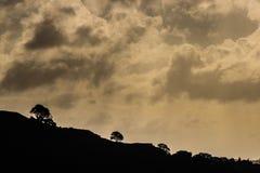 Nubes de la tarde Fotos de archivo libres de regalías