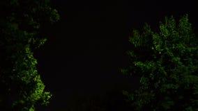 Nubes de la tempestad de truenos en la noche con el relámpago almacen de video