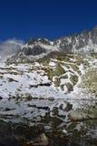 Nubes de madera del verde de la naturaleza de la montaña Fotografía de archivo