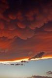 Nubes de Mammatus en la puesta del sol delante de la tempestad de truenos violenta Foto de archivo libre de regalías