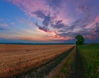Nubes de pintura de la puesta del sol fotografía de archivo
