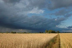 Nubes de tormenta imágenes de archivo libres de regalías