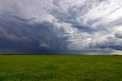 Nubes de tormenta del verano sobre prado con tempestad de truenos de levantamiento de la hierba verde Fotografía de archivo libre de regalías