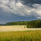 Nubes de tormenta sobre campo de trigo Imagen de archivo libre de regalías