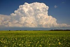 Nubes de tormenta sobre Saskatchewan imagenes de archivo