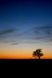 Nubes de Whispy en la puesta del sol Imágenes de archivo libres de regalías