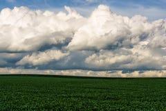 Nubes del balanceo sobre campo del Mid West imagen de archivo libre de regalías