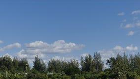 Nubes del blanco del movimiento del lapso de tiempo metrajes