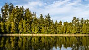 Nubes del bosque del lago Todavía agua debajo del cielo nublado azul imágenes de archivo libres de regalías