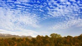 Nubes del lapso de tiempo sobre el bosque del otoño almacen de metraje de vídeo