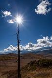Nubes del otoño del árbol del sol de las montañas Imágenes de archivo libres de regalías