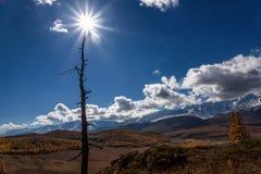 Nubes del otoño del árbol del sol de las montañas Imagen de archivo libre de regalías