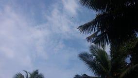 Nubes del tiempo del día Fotos de archivo