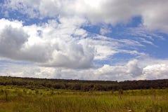 Nubes del verano fotografía de archivo libre de regalías