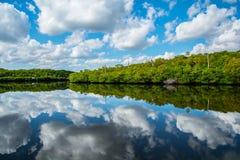 Nubes en el río Fotografía de archivo libre de regalías