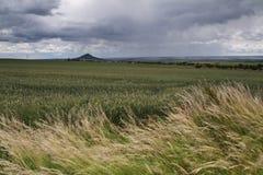 Nubes grises que ruedan sobre granja Foto de archivo