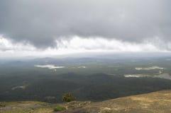 Nubes hermosas con horizonte y verdor Fotografía de archivo