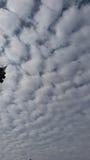 Nubes hinchadas Imagenes de archivo