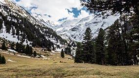 Nubes móviles Timelapse 4k de la opinión hermosa de la primavera de las montañas almacen de metraje de vídeo